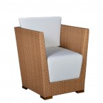 Viva-Arm-Dining-Chair