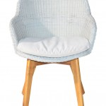 New-Skal-Arm-Chair-Front